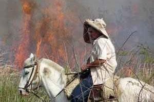 Der lange und zähe Kampf der Indígenas in Paraguay um ihre Landrechte